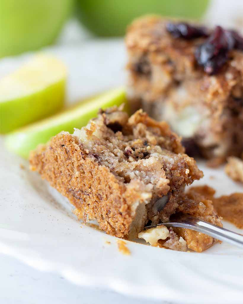 A piece of super soft, fluffy and moist apple cake with cinnamon decorated with dry cranberry and peanut butter. Easy recipe for fall dessert or treat idea.
